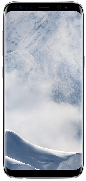 Samsung Galaxy S8 stříbrný + dárek Samsung EP-NG930BB (černá) zdarma