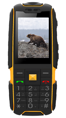 Aligator RX20 eXtremo AR20BY černo žlutý
