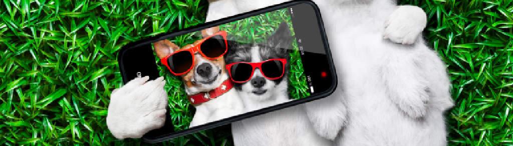 5 mobilů do 5 000 Kč: Za málo peněz koupíte překvapivě hodně muziky