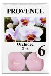 Provence Orchidea vonná svíčka 6ks
