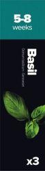 Plantui Basil Bazalka pravá (3ks)