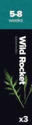 Plantui Wild Rocket Rukola Křez tenkolistý (3ks)