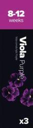 Plantui Viola Maceška rohatá purpurová (3ks)