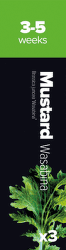 Plantui Mustard Wasabi Hořčice indická (3ks)