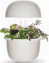 Plantui 3E Smart Garden bílá + mix bylinek