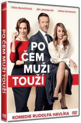 Po čem muži touží - DVD