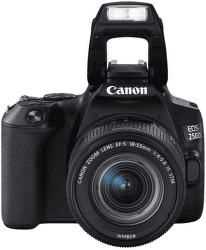 Canon EOS 250D + 18-55 mm f/4-5,6 IS STM