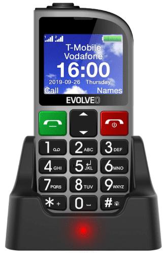 Evolveo EasyPhone FM stříbrný