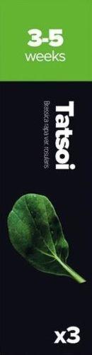 Plantui Tatsoi (brukev, zelí)