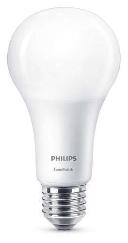 PHILIPS LIGHTING WW FR6, LED SSW 100W