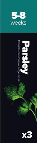 parsley 1