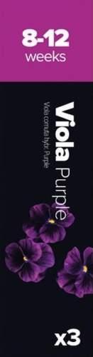 Plantui Maceška rohatá purpurová