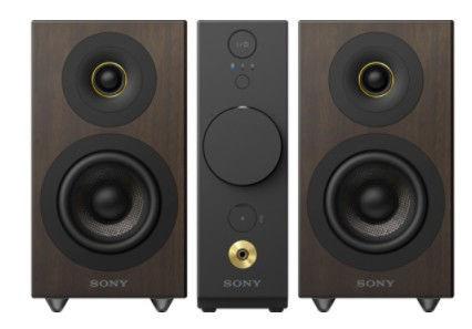 Sony CAS-1B (černo-hnědý)