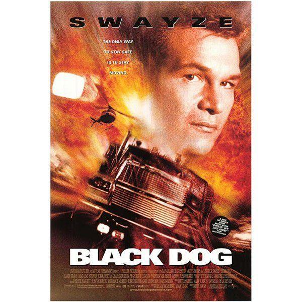Black Dog - DVD film