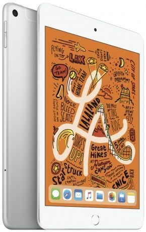 Apple iPad mini 256GB Cellular (2019) MUXD2FD/A stříbrný