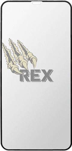 Sturdo Rex Gold tvrzené sklo pro Apple iPhone X, černá