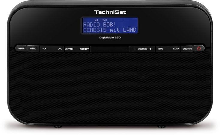 TechniSat DigitRadio 250 (černé)
