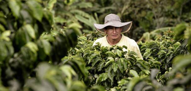 Trvalá udržitelnost Nespresso